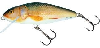 SALMO REAL ROACH 14cm 62gr floating diving depth 5-11m