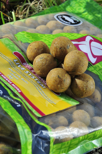 CCMORE BOILIES LIVE SYSTEM 15MM 1KG