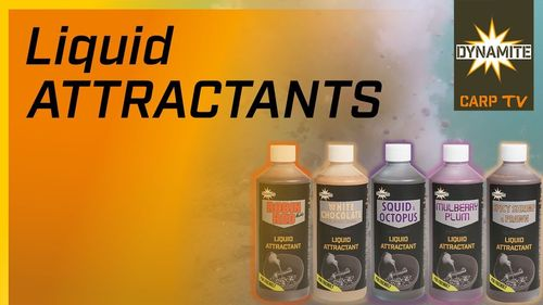 DYNAMITE LIQUID ATTRACTANT SQUID&OCTOPUS 500ML